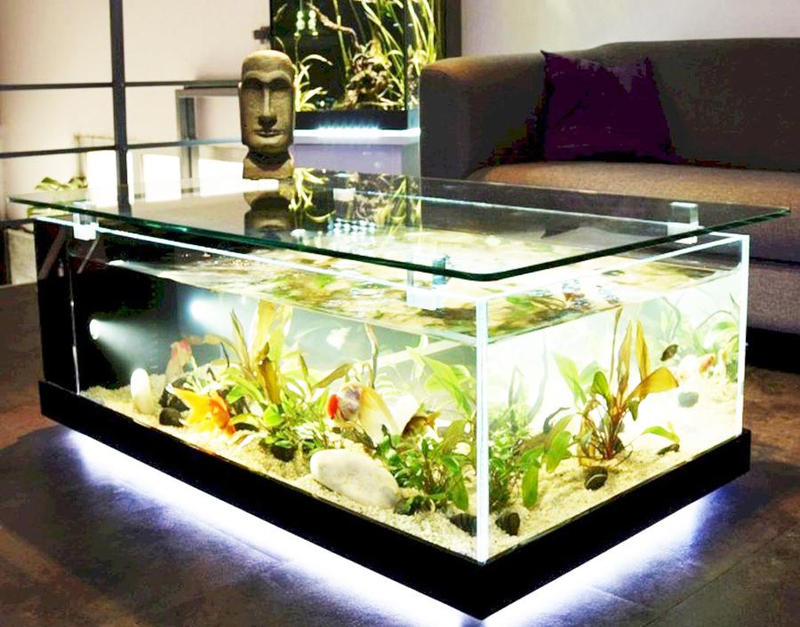 Vị trí đặt bể cá phong thủy trong phòng khách