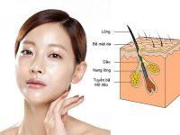 Nguyên nhân dẫn đến da nhờn