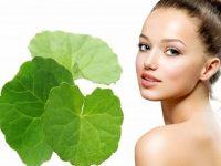 Rau má – Các cách làm đẹp bằng rau má
