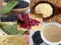 Mách bạn thực đơn giảm cân với bột đậu siêu hiệu quả